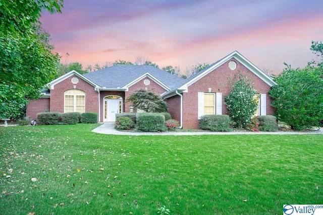 217 Sara Sista Circle, Harvest, AL 35749 (MLS #1770101) :: MarMac Real Estate