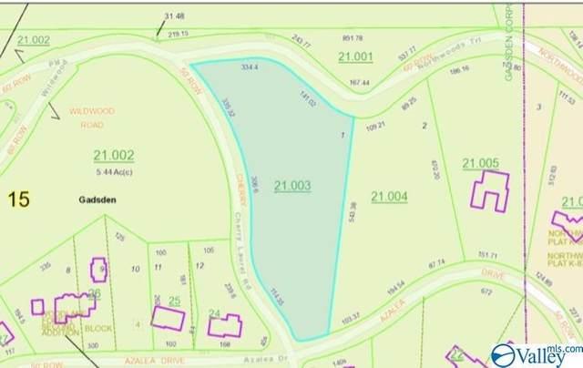 1 Northwoods Trail, Gadsden, AL 35901 (MLS #1770122) :: Rebecca Lowrey Group