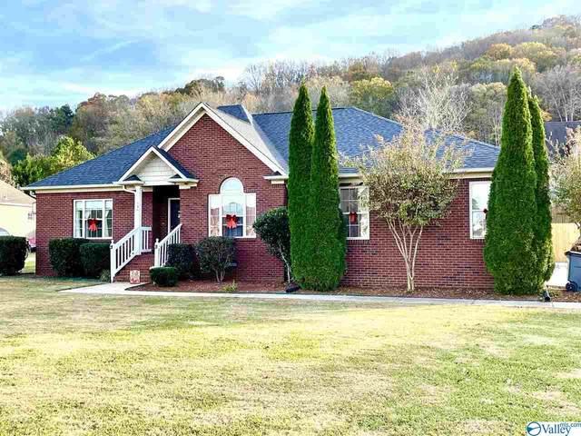 146 Azalea Circle, Guntersville, AL 35976 (MLS #1770147) :: Coldwell Banker of the Valley