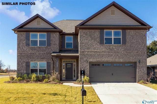 210 Hydra Circle, Huntsville, AL 35811 (MLS #1770339) :: MarMac Real Estate