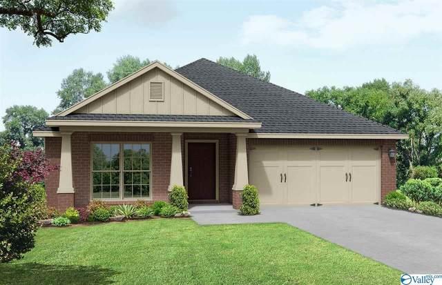 48 Sage Oak Drive, Priceville, AL 35603 (MLS #1770365) :: Revolved Realty Madison