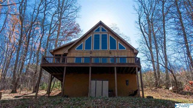 2344 County Road 166, Fort Payne, AL 35967 (MLS #1770401) :: LocAL Realty