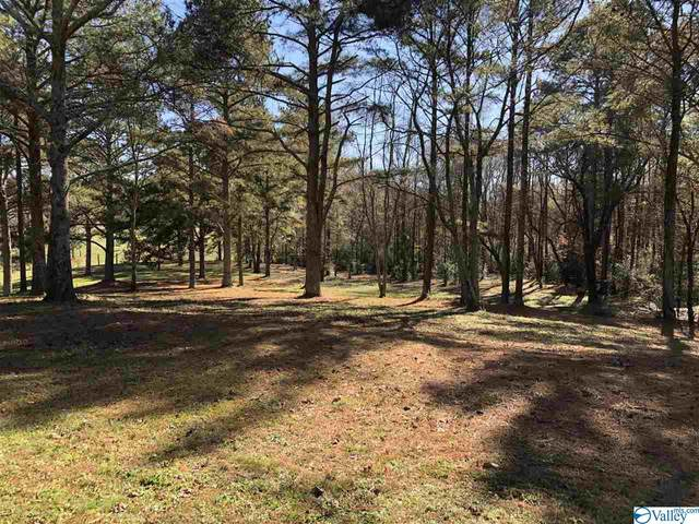 64 Lakeview Road, Altoona, AL 35952 (MLS #1770659) :: Southern Shade Realty
