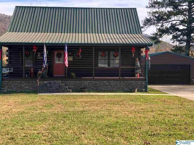 15958 Alabama Highway 9, Piedmont, AL 36272 (MLS #1770720) :: RE/MAX Distinctive | Lowrey Team