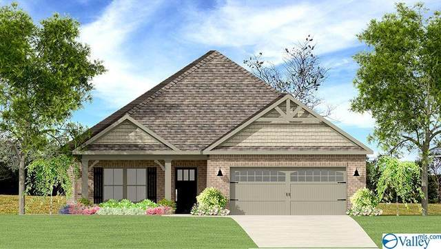 1809 SE Shadowbrook Lane, Cullman, AL 35055 (MLS #1770896) :: MarMac Real Estate
