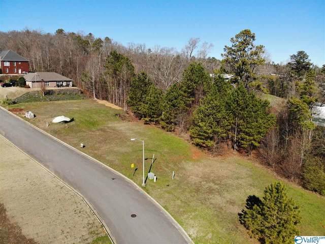 24 Waterfront Street, Guntersville, AL 35976 (MLS #1770975) :: Green Real Estate