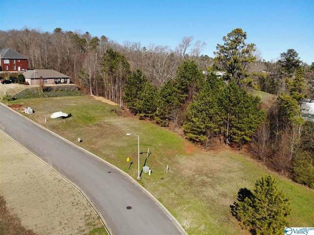 21 Waterfront Street, Guntersville, AL 35976 (MLS #1770977) :: Green Real Estate
