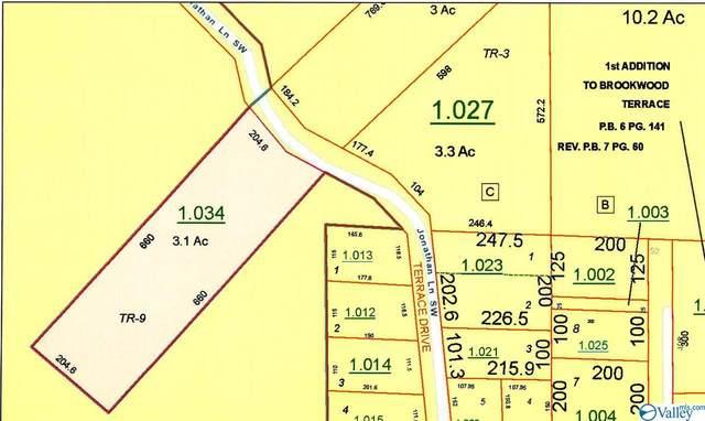 XXXX Margaret Thacker Lane, Fort Payne, AL 35968 (MLS #1771153) :: RE/MAX Distinctive   Lowrey Team