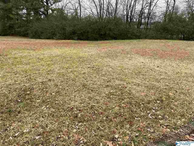 6390 Green Meadow Road, Huntsville, AL 35810 (MLS #1771227) :: RE/MAX Distinctive | Lowrey Team