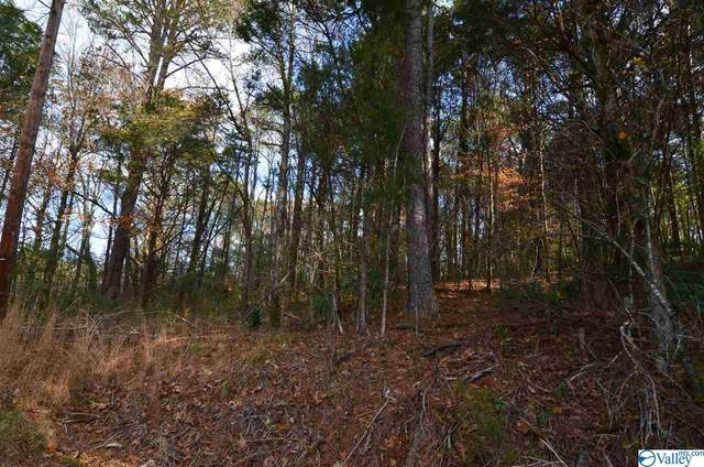 76 Riverside Drive, Gadsden, AL 35901 (MLS #1771353) :: Rebecca Lowrey Group