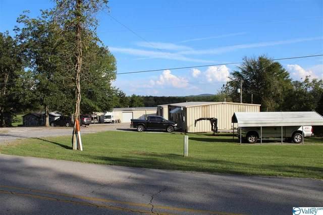 3019 NE New Hope Cedar Point Rd, Woodville, AL 35776 (MLS #1771790) :: RE/MAX Distinctive | Lowrey Team