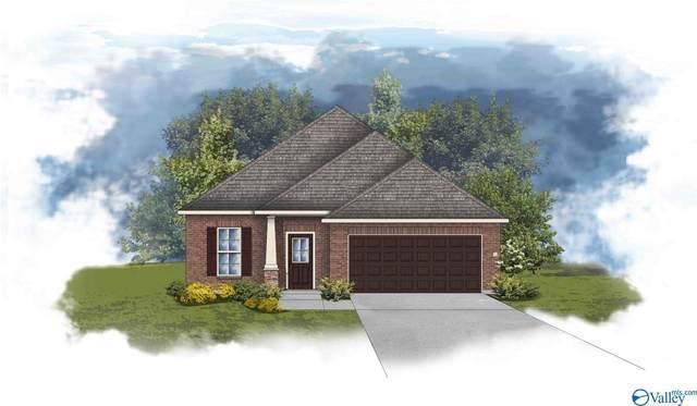 124 Rita Ann Way, Meridianville, AL 35759 (MLS #1771823) :: Rebecca Lowrey Group