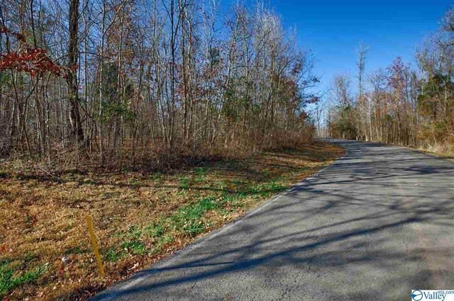 114 Lookout Mountain Drive, Scottsboro, AL 35768 (MLS #1771827) :: LocAL Realty