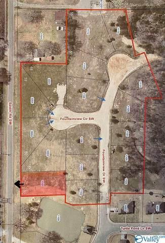1101 SW Salem Road, Hartselle, AL 35640 (MLS #1772215) :: The Pugh Group RE/MAX Alliance