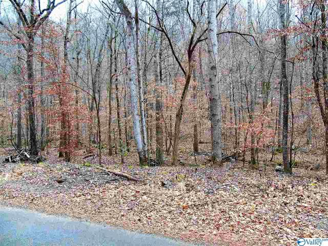 0 Shooting Star Trail, Gurley, AL 35748 (MLS #1772304) :: Coldwell Banker of the Valley