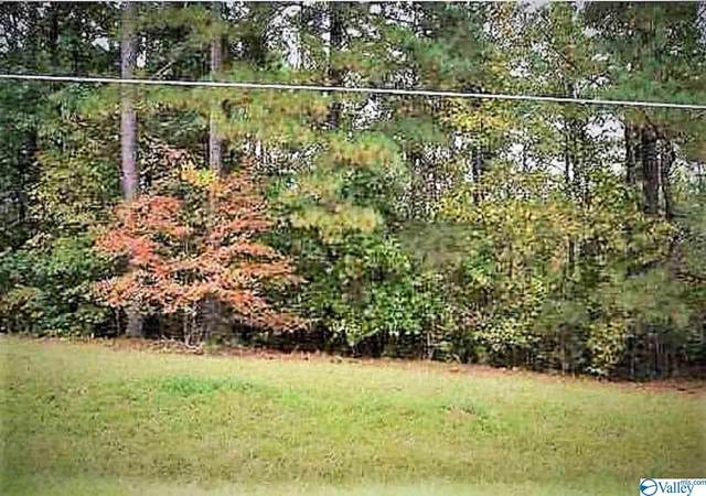 4 County Road 380, Centre, AL 35960 (MLS #1772372) :: Southern Shade Realty