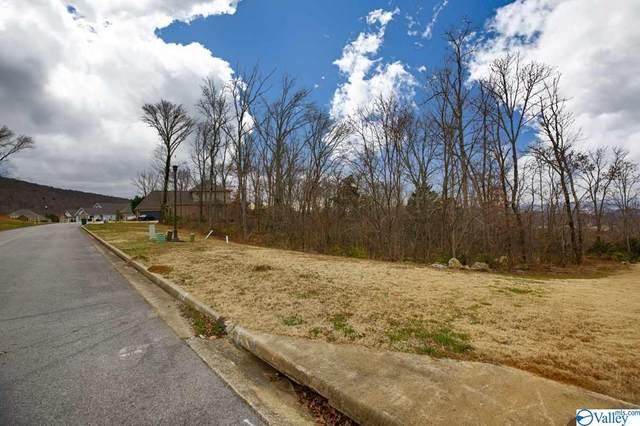 2819 Talon Circle, Huntsville, AL 35811 (MLS #1772413) :: Southern Shade Realty