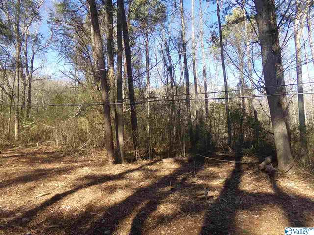 0 Dunsmore Drive, Grant, AL 35747 (MLS #1772508) :: MarMac Real Estate