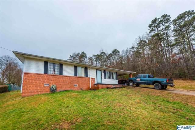 408 15th Street, Fort Payne, AL 35967 (MLS #1772561) :: MarMac Real Estate