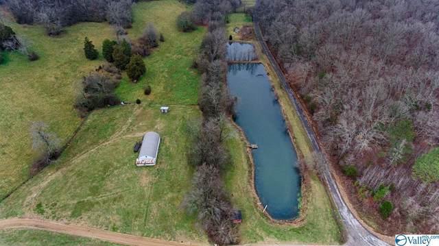 29799 Bates Hollow Road, Elkmont, AL 35620 (MLS #1772671) :: Southern Shade Realty