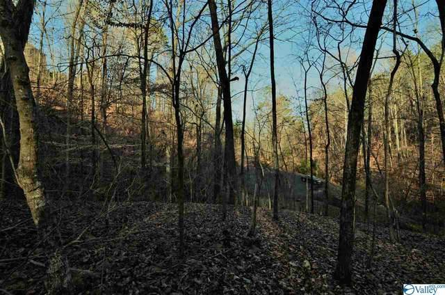 5 Northwood Trail, Gadsden, AL 35901 (MLS #1772809) :: MarMac Real Estate