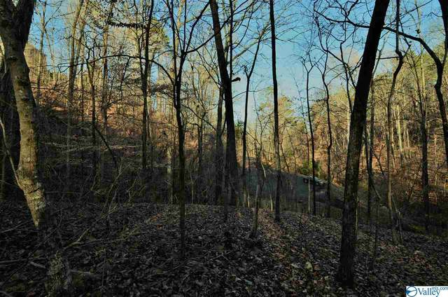 5 Northwood Trail, Gadsden, AL 35901 (MLS #1772809) :: Rebecca Lowrey Group