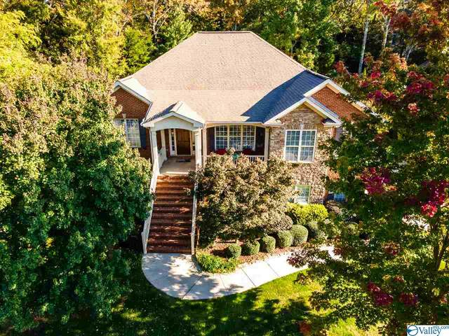 11005 Mathis Mountain Road, Huntsville, AL 35803 (MLS #1772829) :: MarMac Real Estate