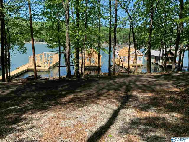 71 (LOT 3) Pine Island Circle, Scottsboro, AL 35769 (MLS #1772889) :: RE/MAX Distinctive | Lowrey Team