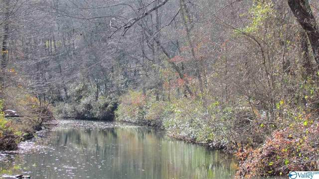 0000 County Road 103, Mentone, AL 35984 (MLS #1772956) :: Southern Shade Realty