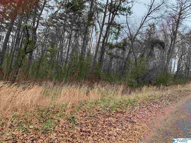 0 Heritage Drive, Piedmont, AL 36272 (MLS #1773008) :: MarMac Real Estate