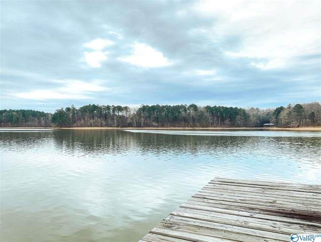 County Road 227, Leesburg, AL 35983 (MLS #1773076) :: Rebecca Lowrey Group