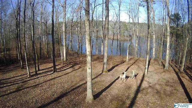2366 Pine Lake Trail, Arab, AL 35016 (MLS #1773280) :: The Pugh Group RE/MAX Alliance