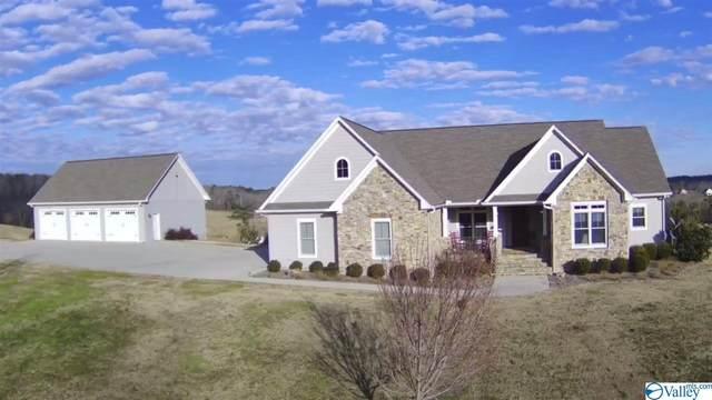 3841 County Road 831, Logan, AL 35098 (MLS #1773286) :: Legend Realty