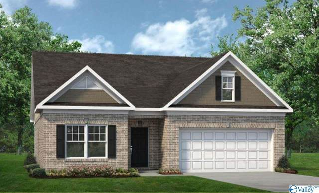 130 Morning Dew Road, Toney, AL 35773 (MLS #1773409) :: MarMac Real Estate