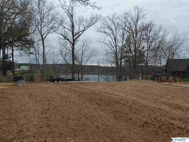 61 County Road 4019, Arley, AL 35541 (MLS #1773435) :: Coldwell Banker of the Valley