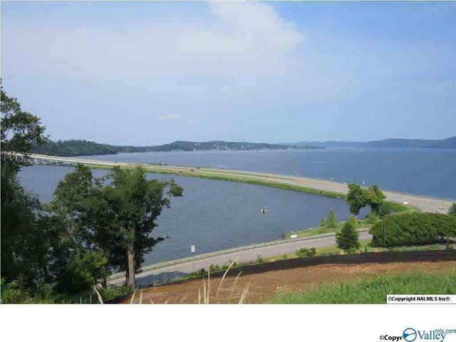 5 Harbor Point Drive, Guntersville, AL 35976 (MLS #1773786) :: Coldwell Banker of the Valley