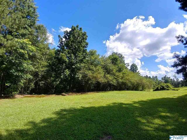 0 Bethsaida Road, Boaz, AL 35957 (MLS #1773813) :: LocAL Realty