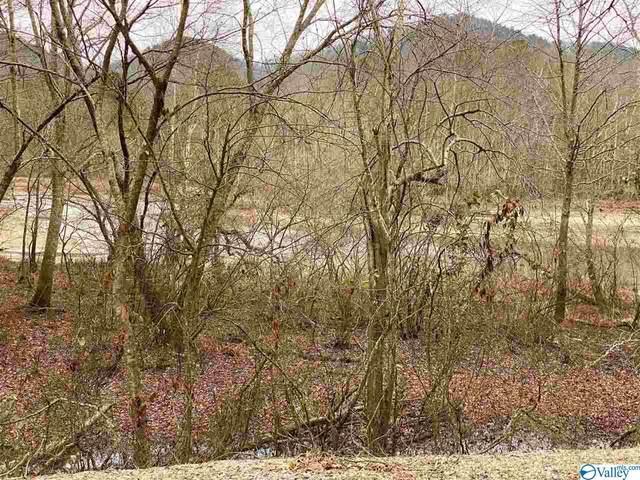 20 County Road 165, Cedar Bluff, AL 35959 (MLS #1773815) :: LocAL Realty