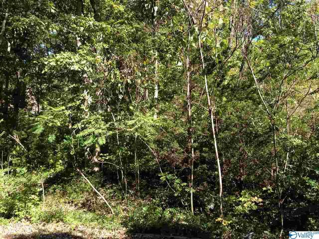 6319 Havenwood Drive, Huntsville, AL 35802 (MLS #1774062) :: Amanda Howard Sotheby's International Realty