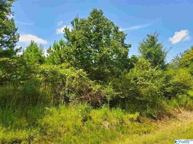 000 County Road 822, Collinsville, AL 35961 (MLS #1774080) :: Green Real Estate