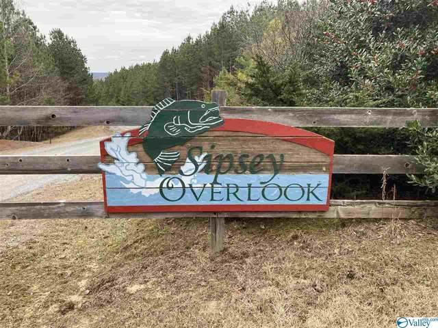 0 Sipsey Overlook Road, Double Springs, AL 35553 (MLS #1774214) :: Amanda Howard Sotheby's International Realty