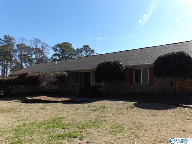 5005 Neely Avenue, Guntersville, AL 35976 (MLS #1774275) :: Coldwell Banker of the Valley