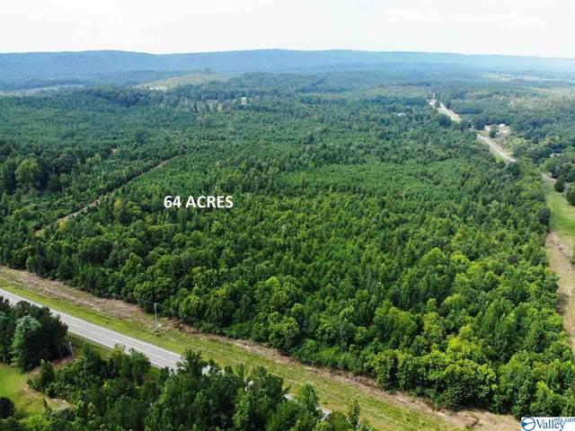 0 Highway 35, Gaylesville, AL 35973 (MLS #1774280) :: RE/MAX Distinctive | Lowrey Team