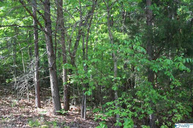 LOT #3 Hickory Lane, Valley Head, AL 35989 (MLS #1774342) :: Green Real Estate