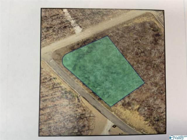 Lot 45 Raintree Drive, Cedar Bluff, AL 35960 (MLS #1774429) :: MarMac Real Estate