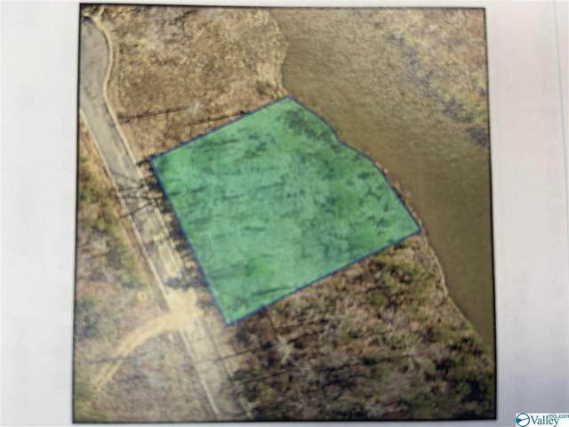 Lot 21 Raintree Drive, Centre, AL 35960 (MLS #1774432) :: MarMac Real Estate