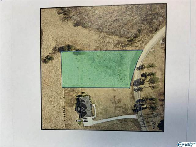 Lot 8 Raintree Drive, Centre, AL 35960 (MLS #1774435) :: MarMac Real Estate