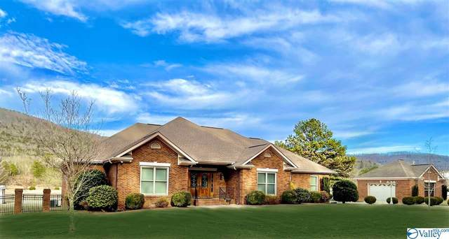 135 Candlestand Circle, Gurley, AL 35748 (MLS #1774460) :: The Pugh Group RE/MAX Alliance