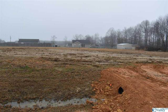 89 County Road 1034, Rainsville, AL 35986 (MLS #1774757) :: Rebecca Lowrey Group