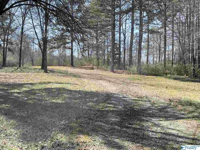 0 Riverview Drive, Southside, AL 35907 (MLS #1774840) :: LocAL Realty